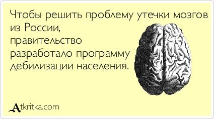 Анекдот Мозг