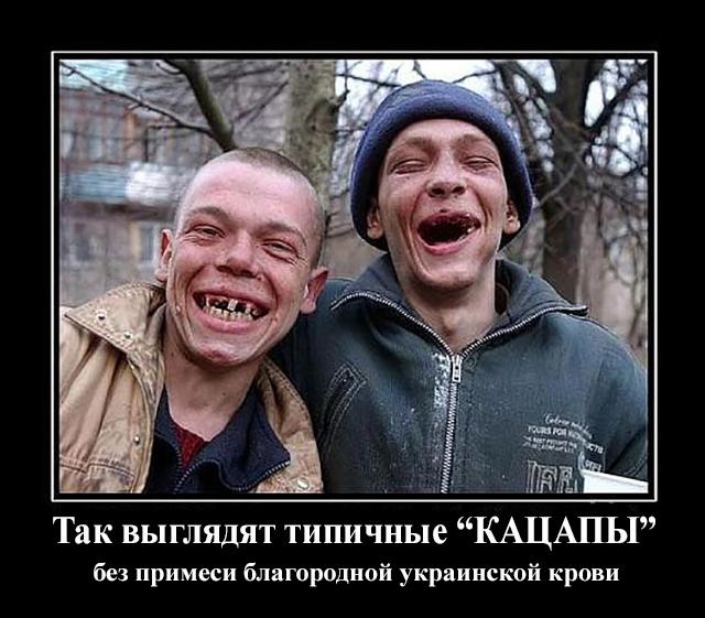 В случае запрета Меджлиса будем требовать новых санкций против России, - Джемилев - Цензор.НЕТ 5229